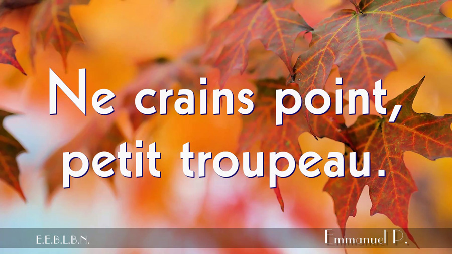 Ne-crains-point,-petit-troupeau