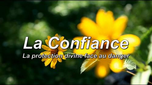 Read more about the article La Confiance.