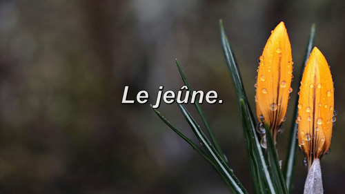 Read more about the article Le jeûne.